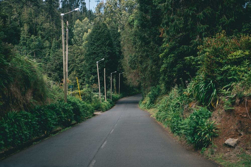 Madeira wegen