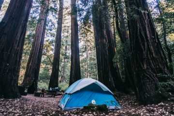 De tent in Big Basin