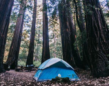 De tent in Big Basin