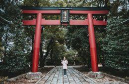 Tokyo Nezu shrine bezoeken