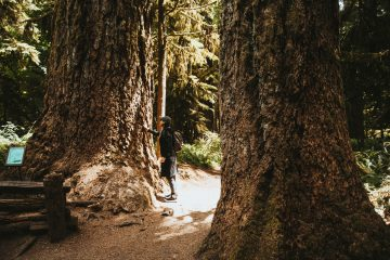 Wat te doen op Vancouver Island